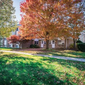 Shillington Commons Apartments For Rent in Shillington, PA Courtyard